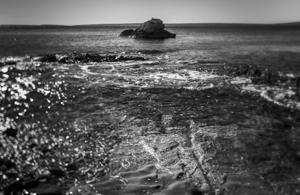 Tić na hridi  - © Janko Belaj