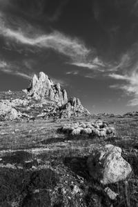 Što se bjeli u gori kamenoj?  - © Janko Belaj