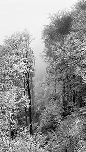 Bijela vrata Medvednice  - © Janko Belaj