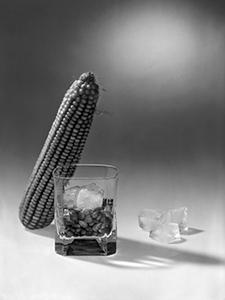 Burbon prije destilacije  - © Janko Belaj