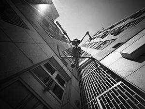 Leti, leti…  - © Janko Belaj