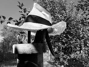 On a dry Pump  - © Janko Belaj