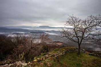Magle do Učke  - © Janko Belaj