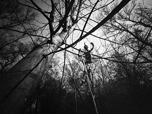 Obješenjak  - © Janko Belaj