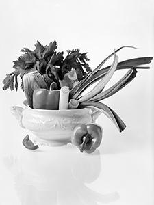 Vegetable Soup before Cooking  - © Janko Belaj