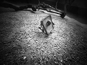 Radikalna dijeta  - © Janko Belaj