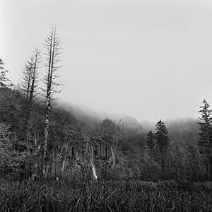 Svitanje plitvičke jeseni  - © Janko Belaj