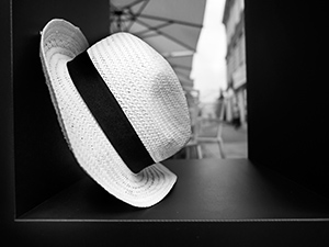 In the Frame  - © Janko Belaj