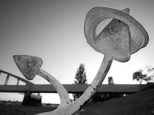 Anchored  - © Janko Belaj