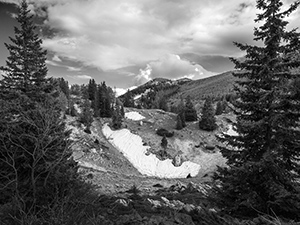 Velebitski hladnjak  - © Janko Belaj
