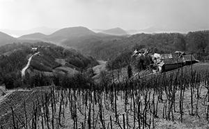 Hills of Zagorje  - © Janko Belaj