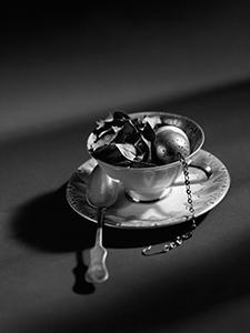Zeleni čaj prije sušenja  - © Janko Belaj
