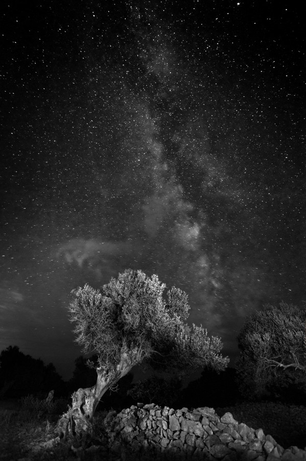 2015-07-24--Lun-0414.jpg - © Janko Belaj